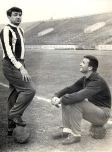 Galić & Šoškić