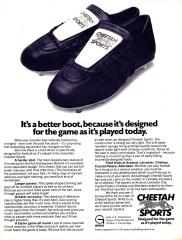 Cheetah 1971