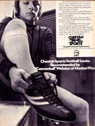 Cheetah 1973