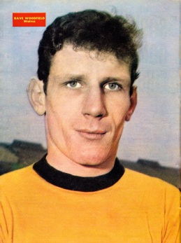 Dave Woodfield, Wolves 1967
