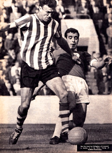 Gerry Young, Sheffield Wednesday 1964