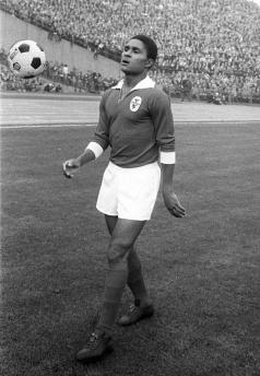 Eusebio, Benfica 1964