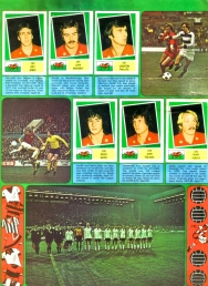 World Cup 1978 FKS Album: Wales